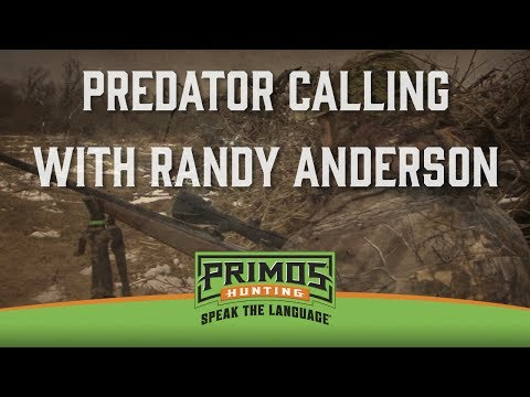 Predator Calling With Randy Anderson-Coyote, Fox, Bobcat Hunts-Primos Truth About Hunting Season 17