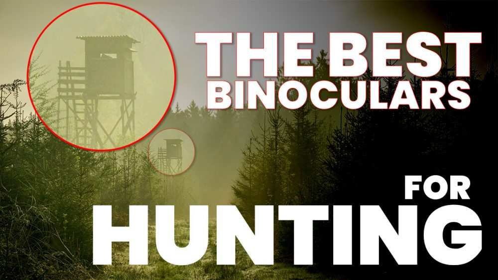 The Best Binoculars For Hunting