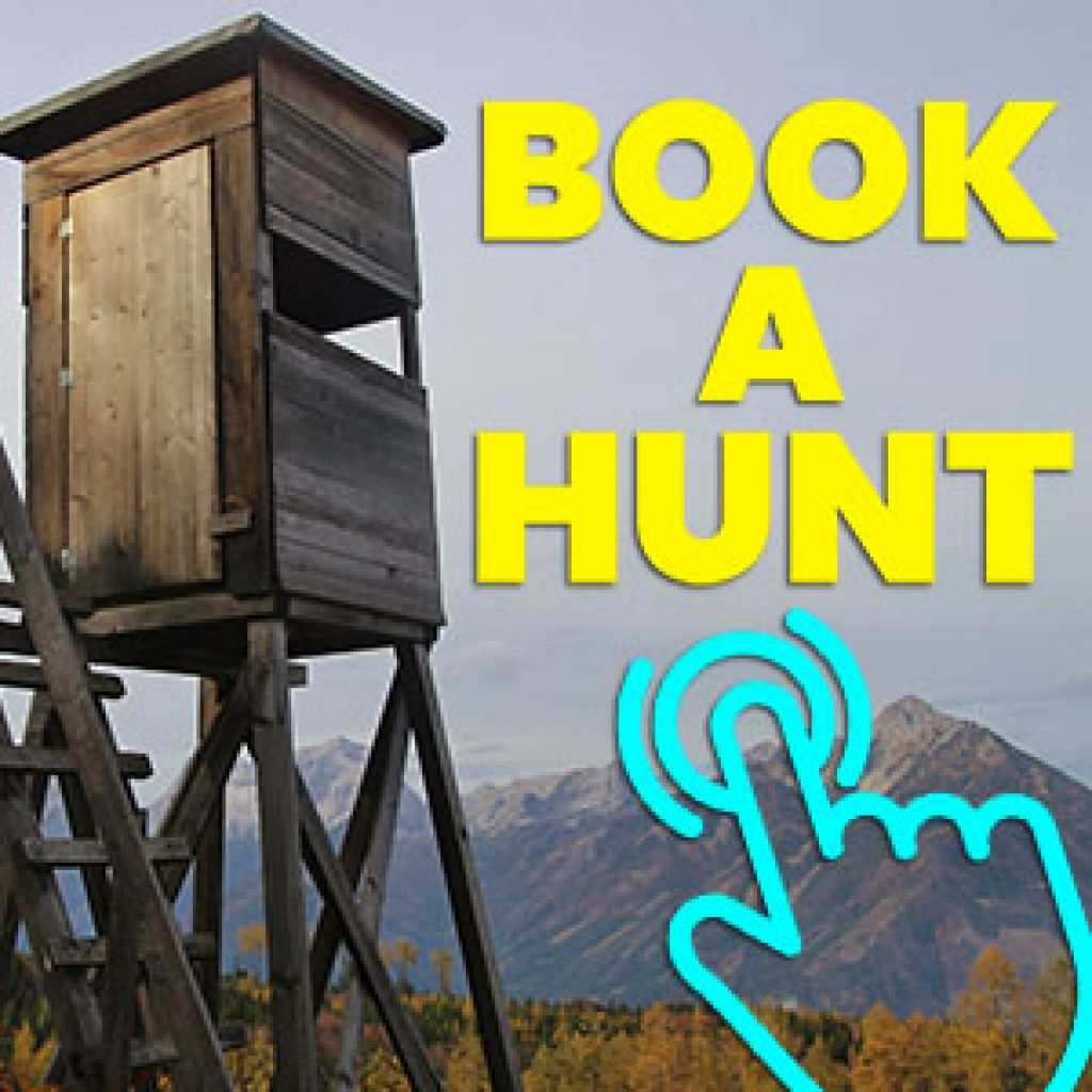 Book Your Next Coyote Hunt!