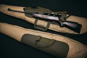 best-gun-for-coyote-hunting