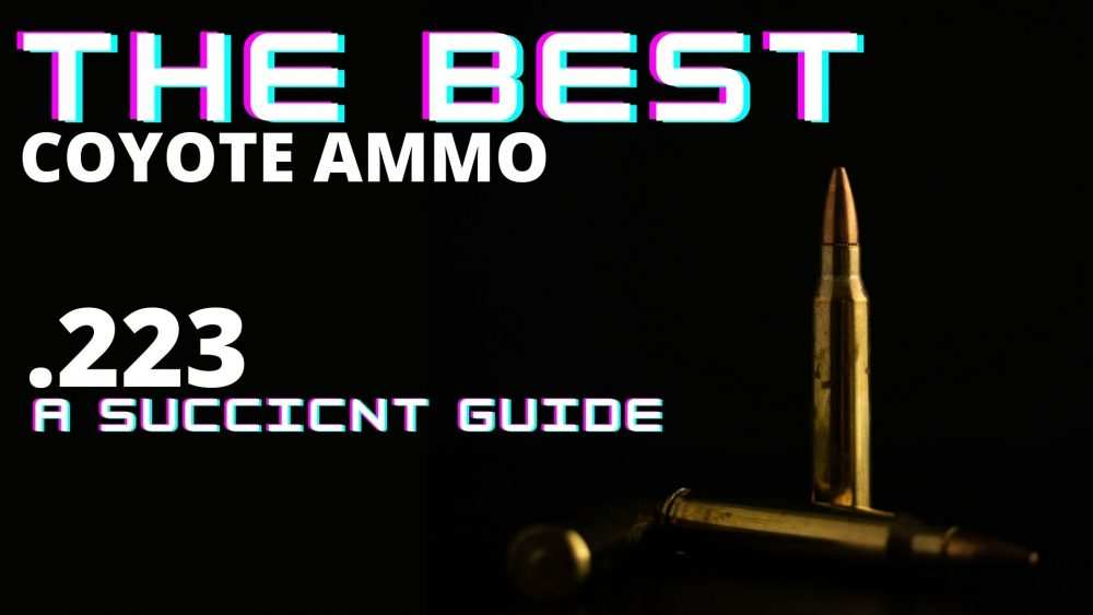 The Best Coyote Ammo 223